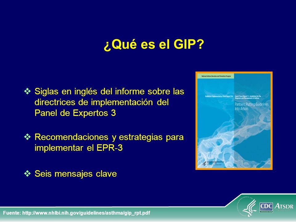¿Qué es el GIP Siglas en inglés del informe sobre las directrices de implementación del Panel de Expertos 3.