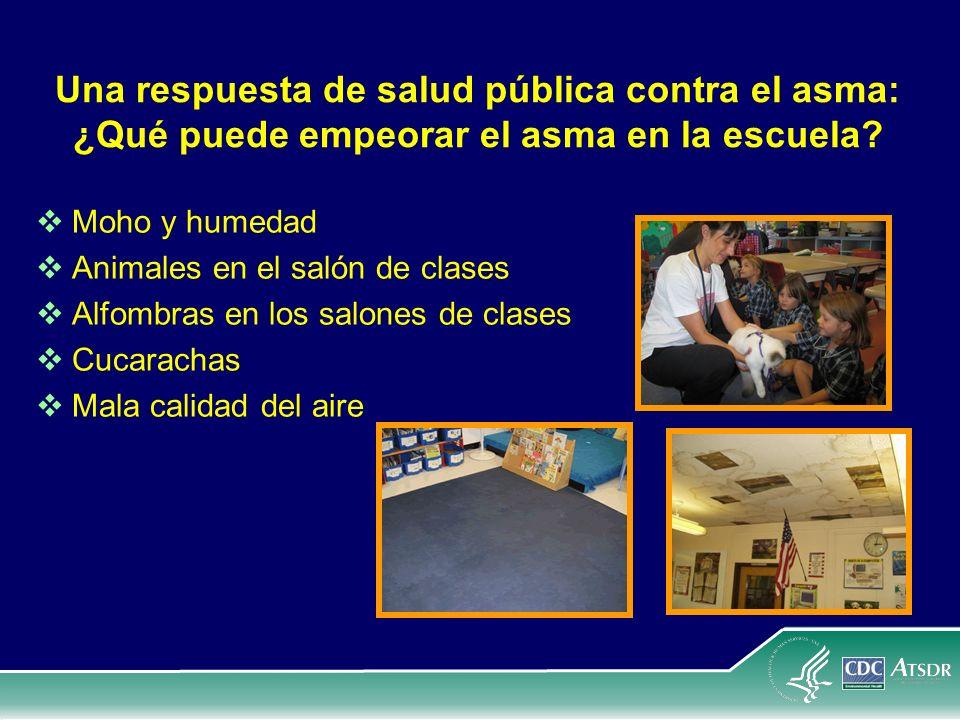 Una respuesta de salud pública contra el asma: ¿Qué puede empeorar el asma en la escuela