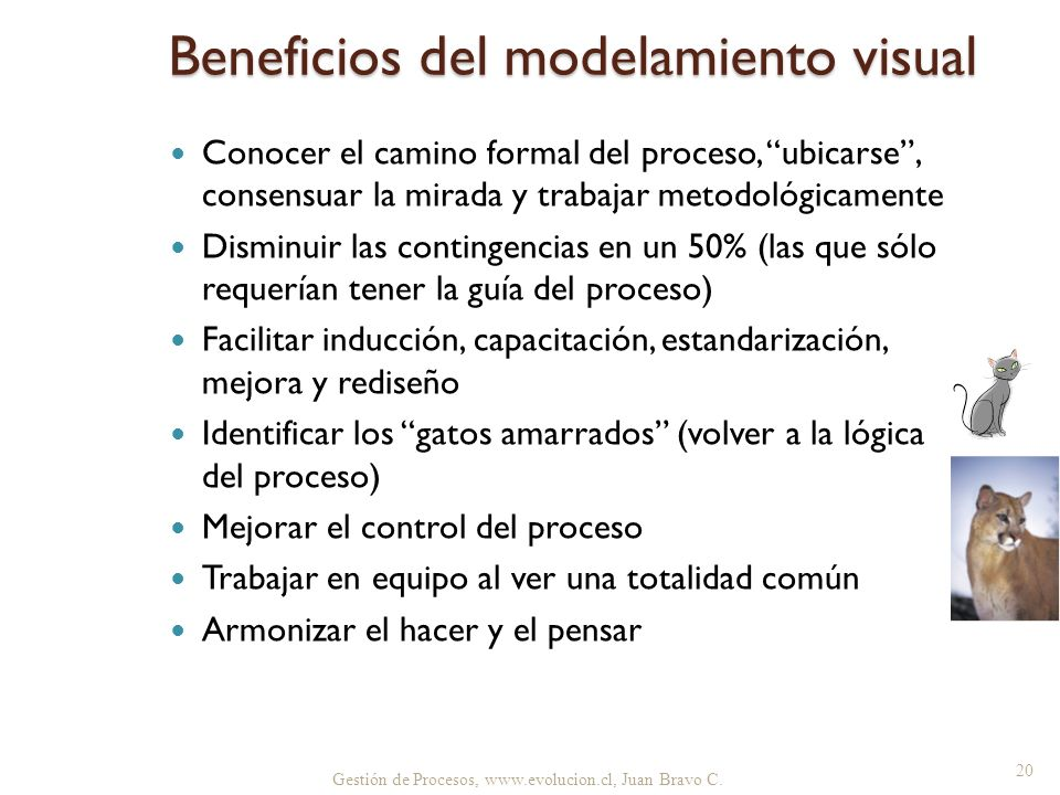 Beneficios del modelamiento visual