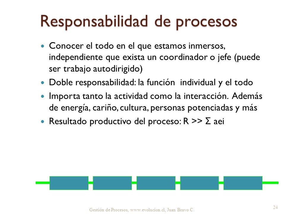 Responsabilidad de procesos