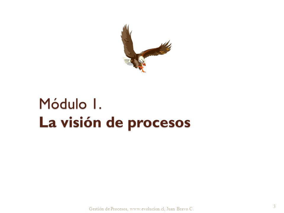Módulo 1. La visión de procesos