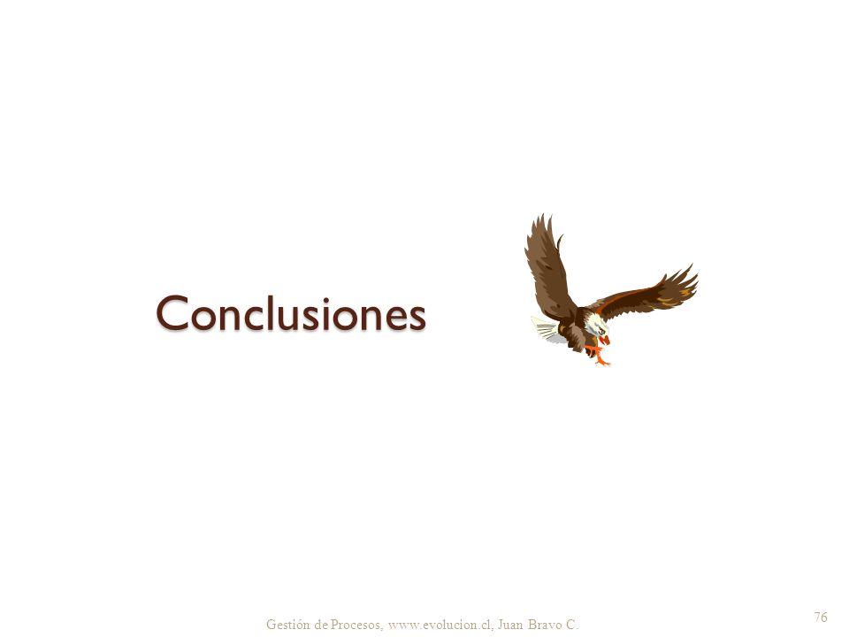 Conclusiones Gestión de Procesos, www.evolucion.cl, Juan Bravo C.