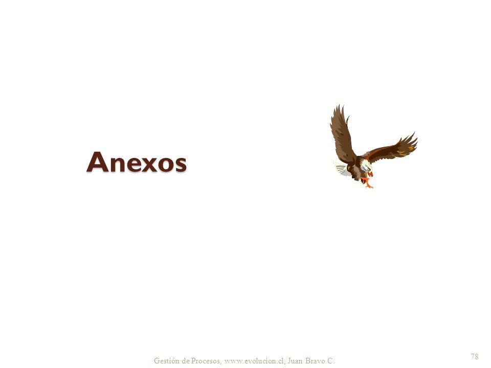 Anexos Gestión de Procesos, www.evolucion.cl, Juan Bravo C.
