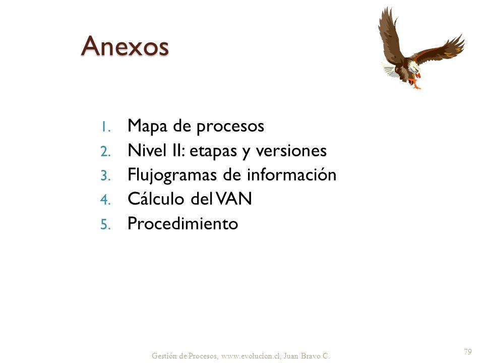 Anexos Mapa de procesos Nivel II: etapas y versiones