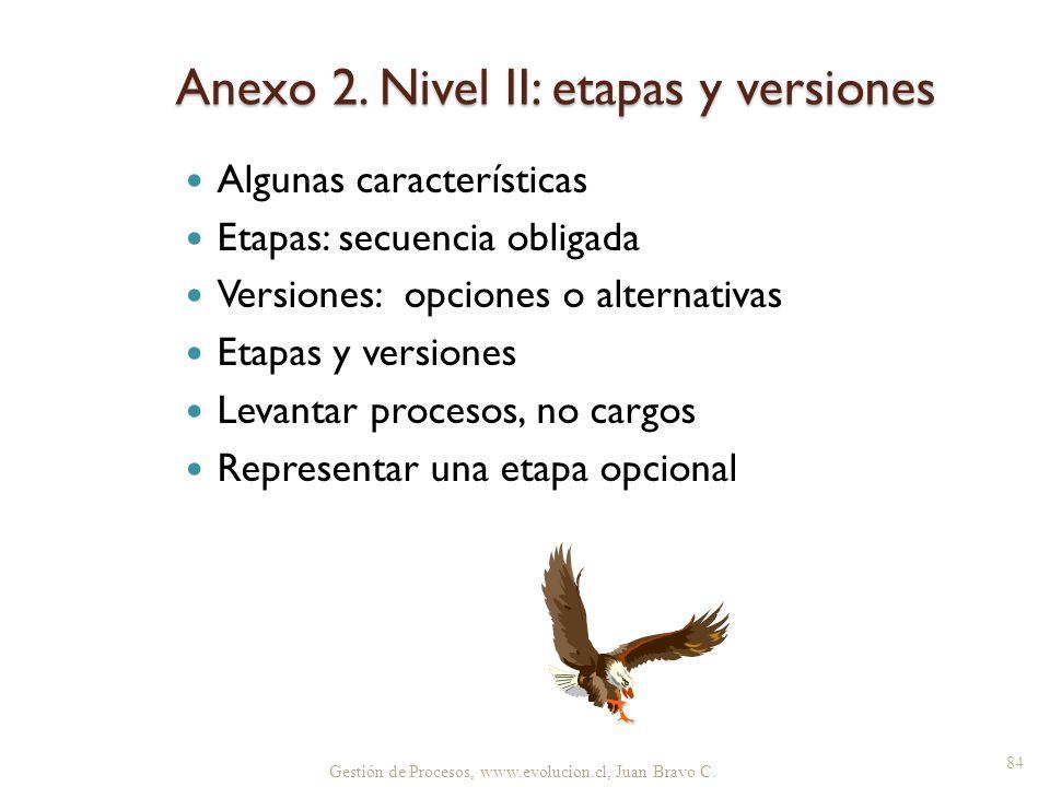 Anexo 2. Nivel II: etapas y versiones