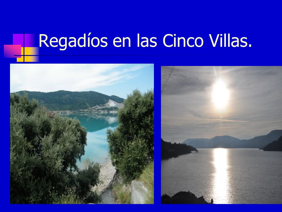 Regadíos en las Cinco Villas.