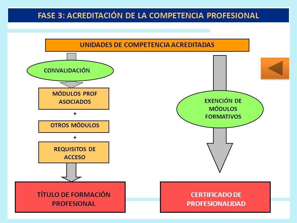 FASE 3: ACREDITACIÓN DE LA COMPETENCIA PROFESIONAL