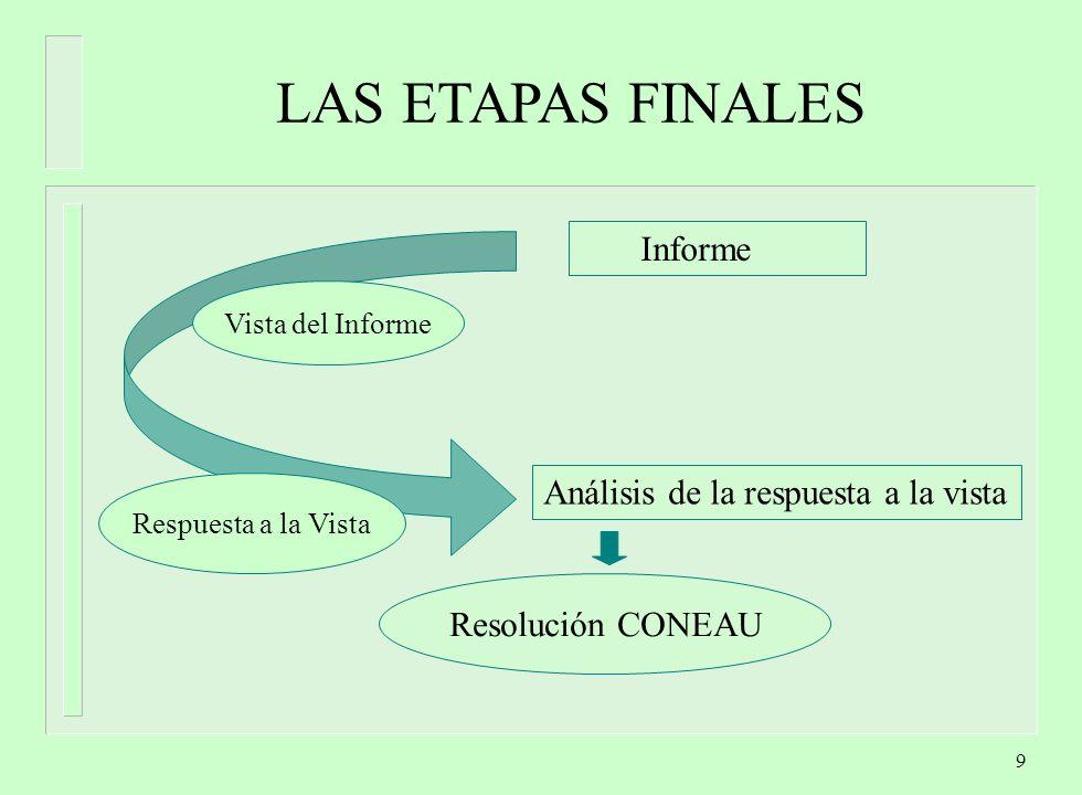 LAS ETAPAS FINALES Informe Análisis de la respuesta a la vista