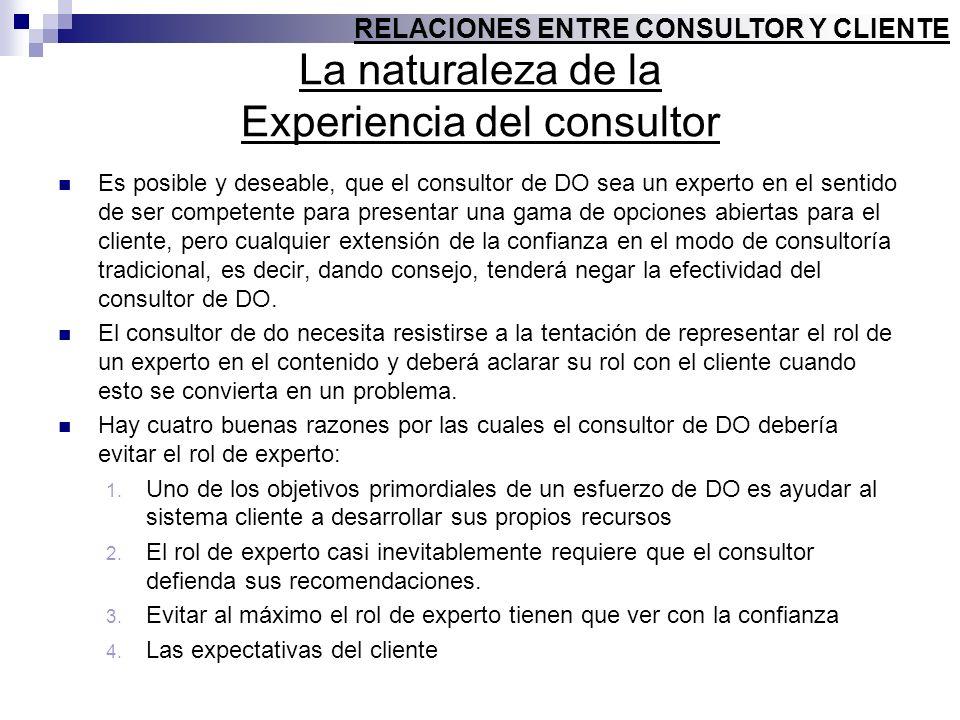 La naturaleza de la Experiencia del consultor