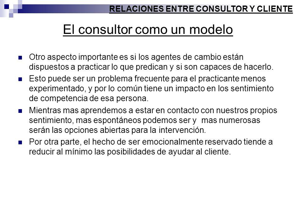 El consultor como un modelo