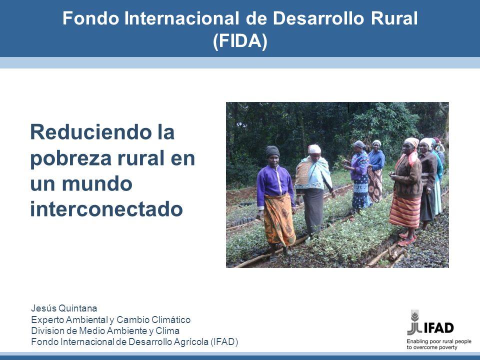 Fondo Internacional de Desarrollo Rural