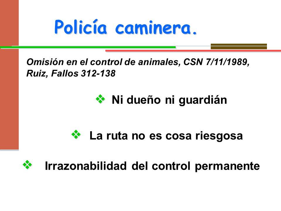 Policía caminera. v v v Ni dueño ni guardián