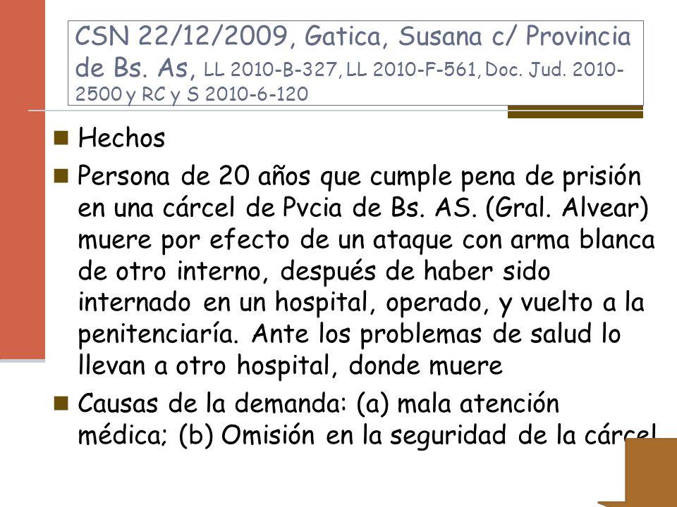 CSN 22/12/2009, Gatica, Susana c/ Provincia de Bs