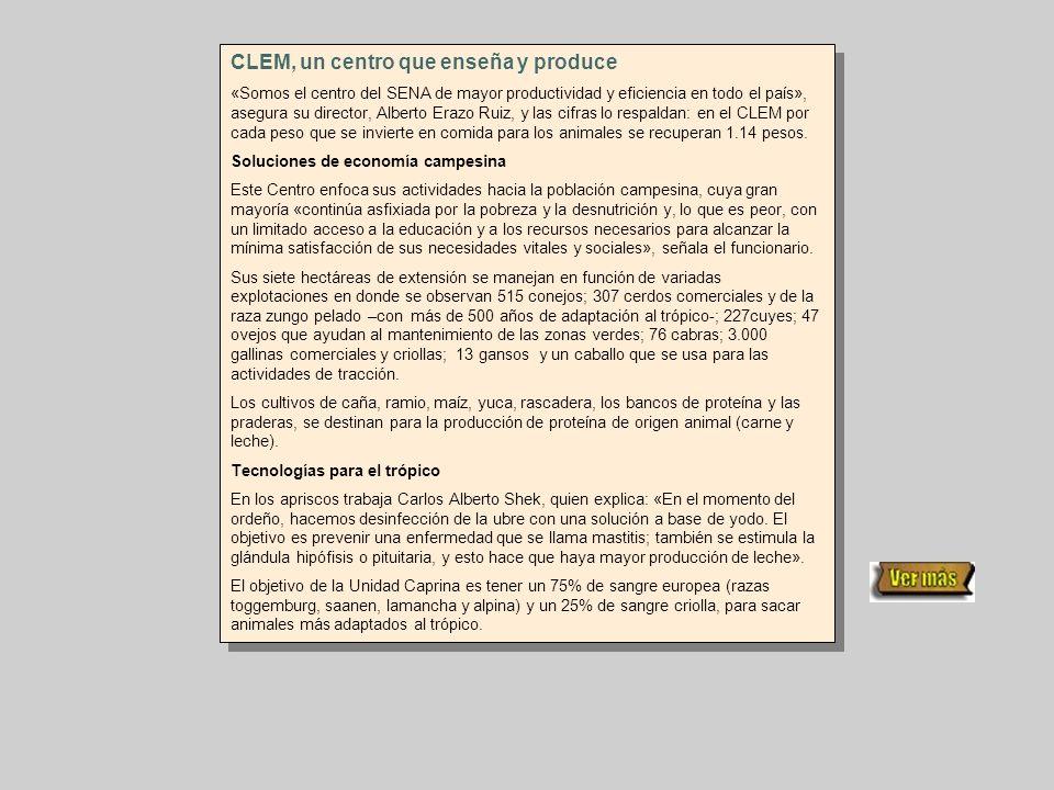 CLEM, un centro que enseña y produce