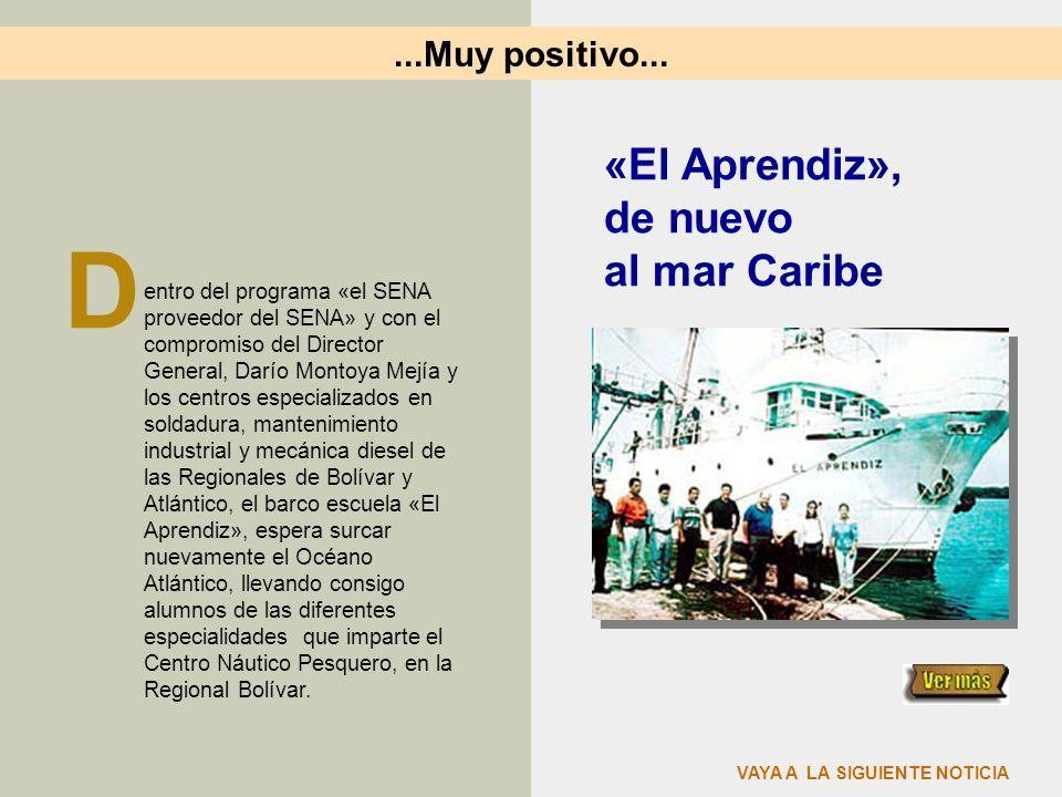 D «El Aprendiz», de nuevo al mar Caribe ...Muy positivo...