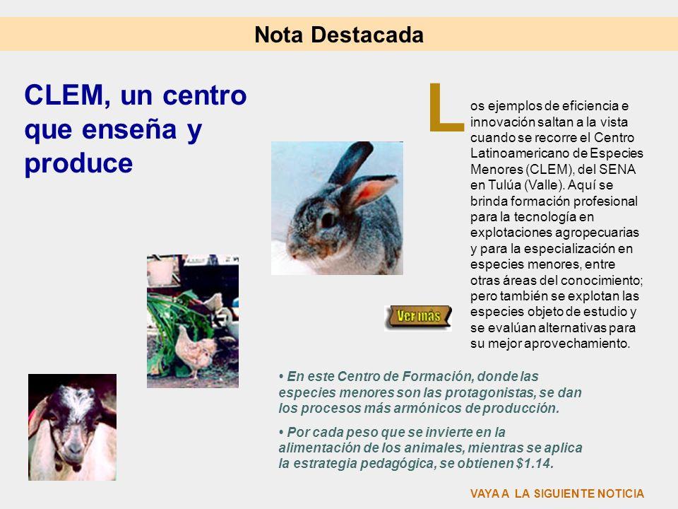 L CLEM, un centro que enseña y produce Nota Destacada