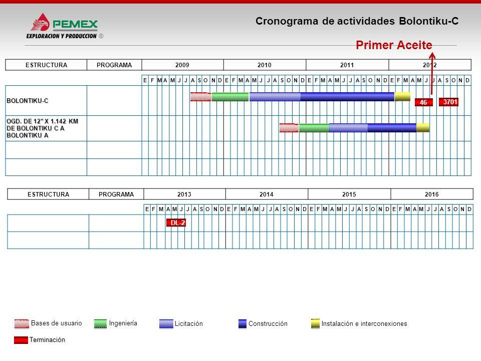 Primer Aceite Cronograma de actividades Bolontiku-C 46 3701 DL-2