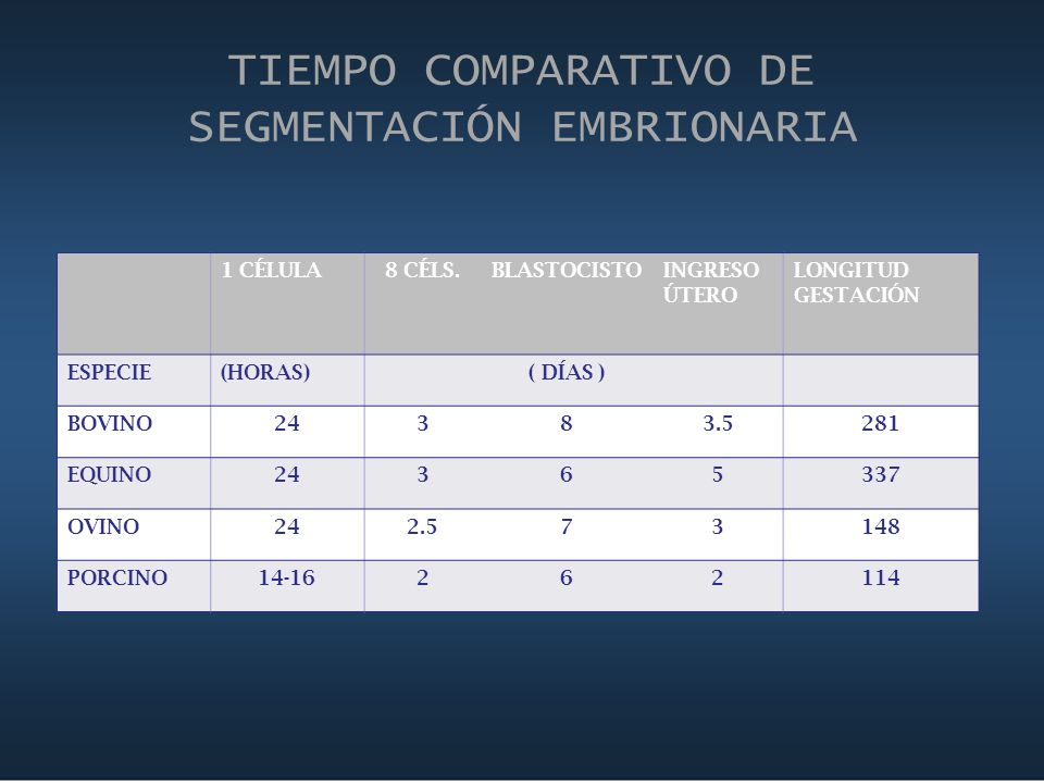 TIEMPO COMPARATIVO DE SEGMENTACIÓN EMBRIONARIA