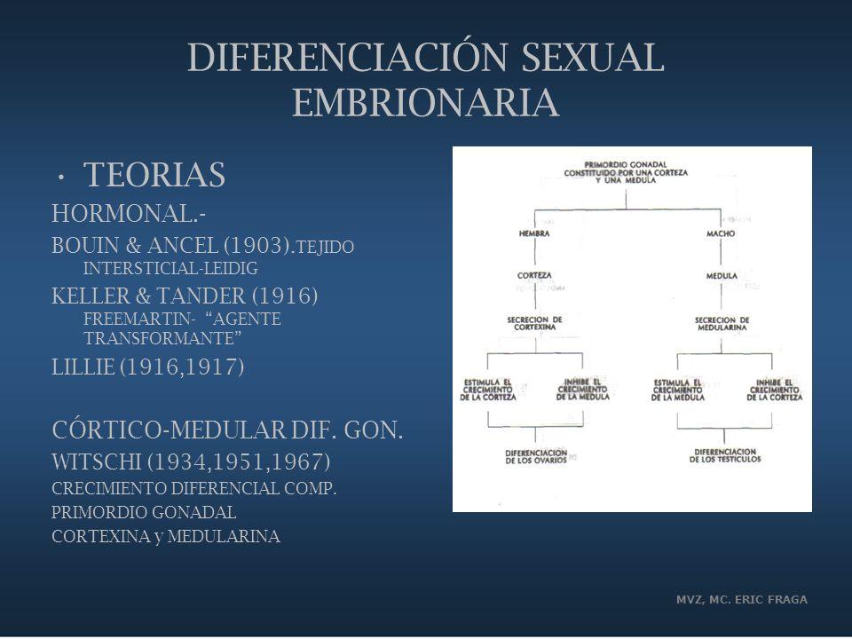 DIFERENCIACIÓN SEXUAL EMBRIONARIA