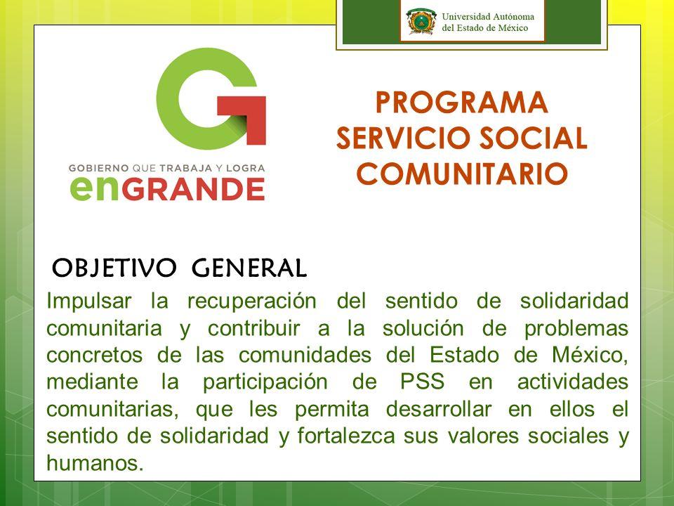 PROGRAMA SERVICIO SOCIAL COMUNITARIO