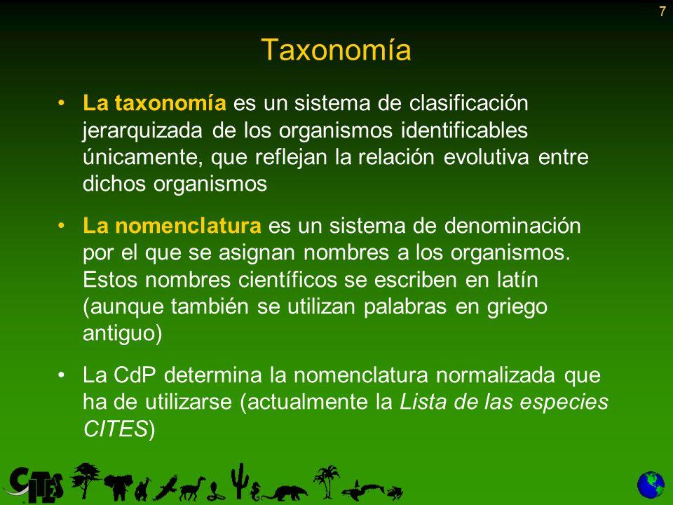 7 Taxonomía.