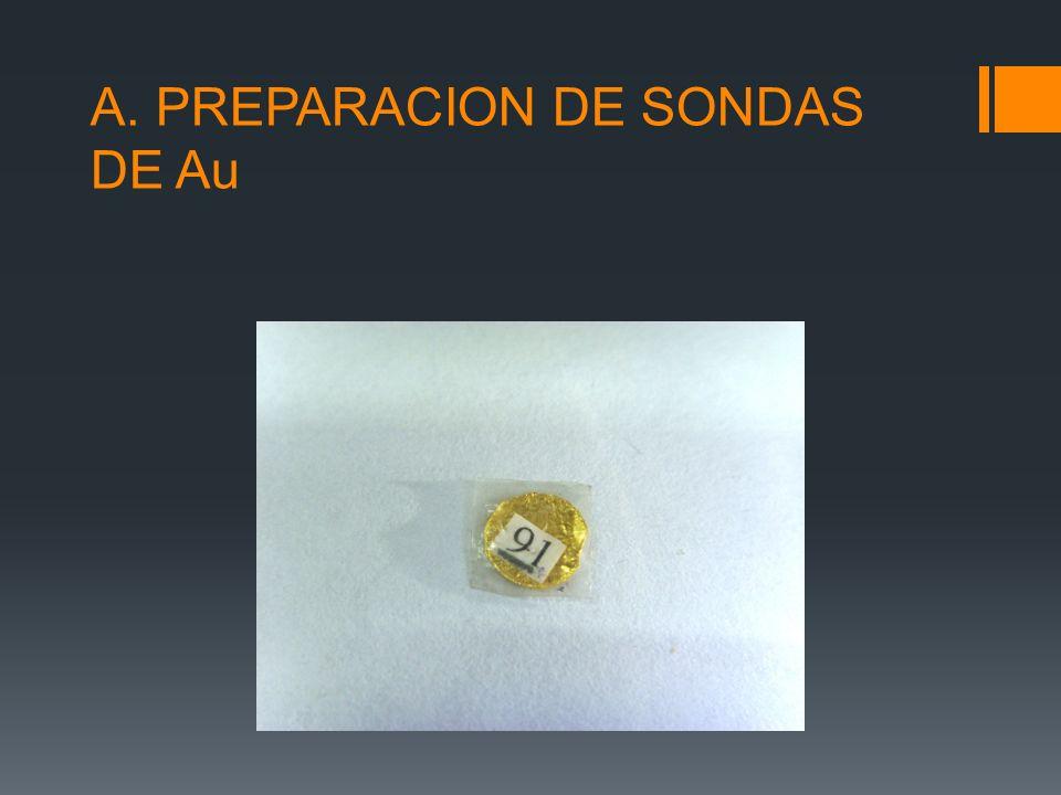 A. PREPARACION DE SONDAS DE Au