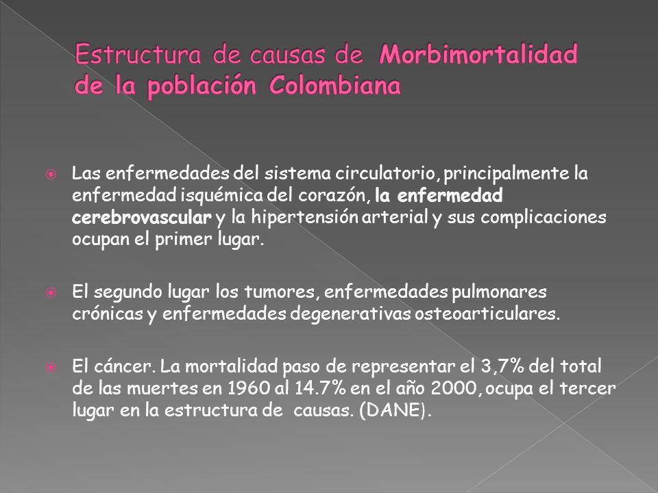 Estructura de causas de Morbimortalidad de la población Colombiana