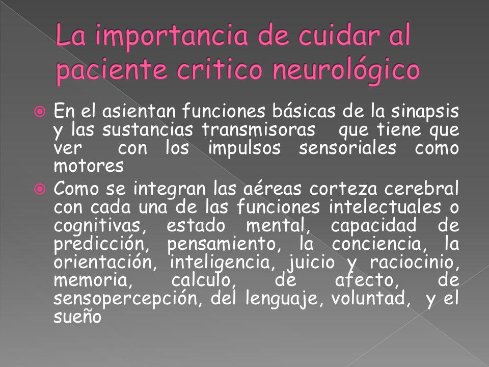 La importancia de cuidar al paciente critico neurológico