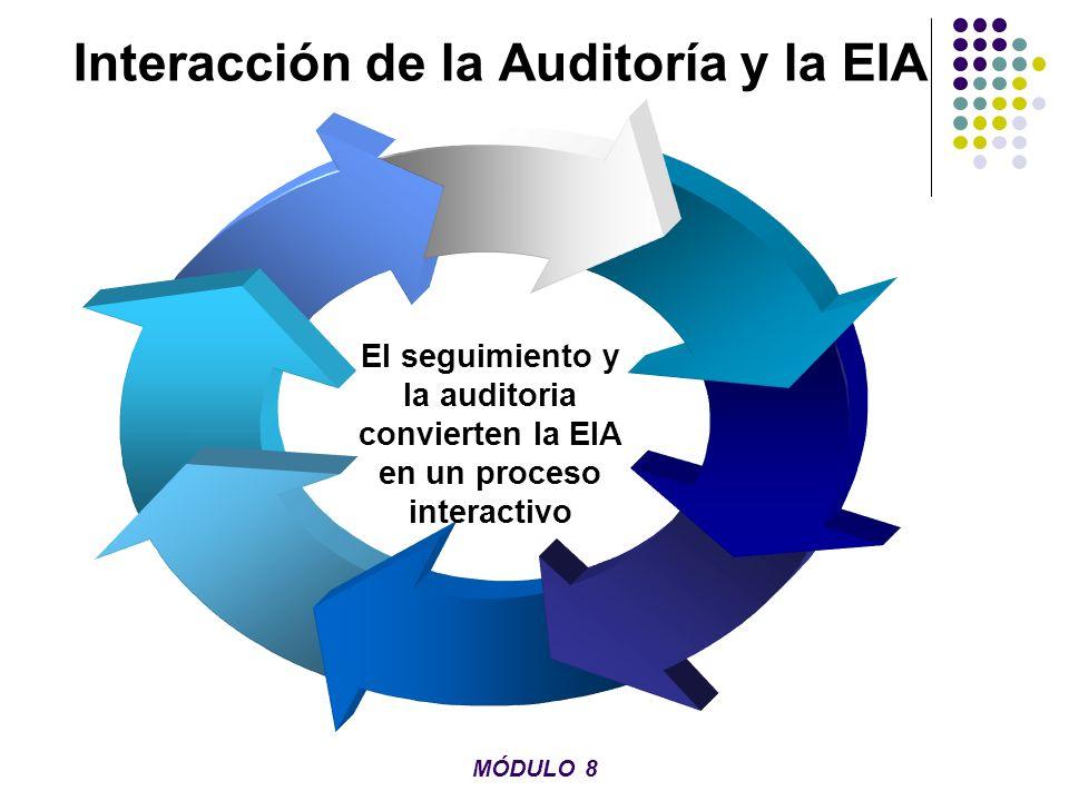 Interacción de la Auditoría y la EIA