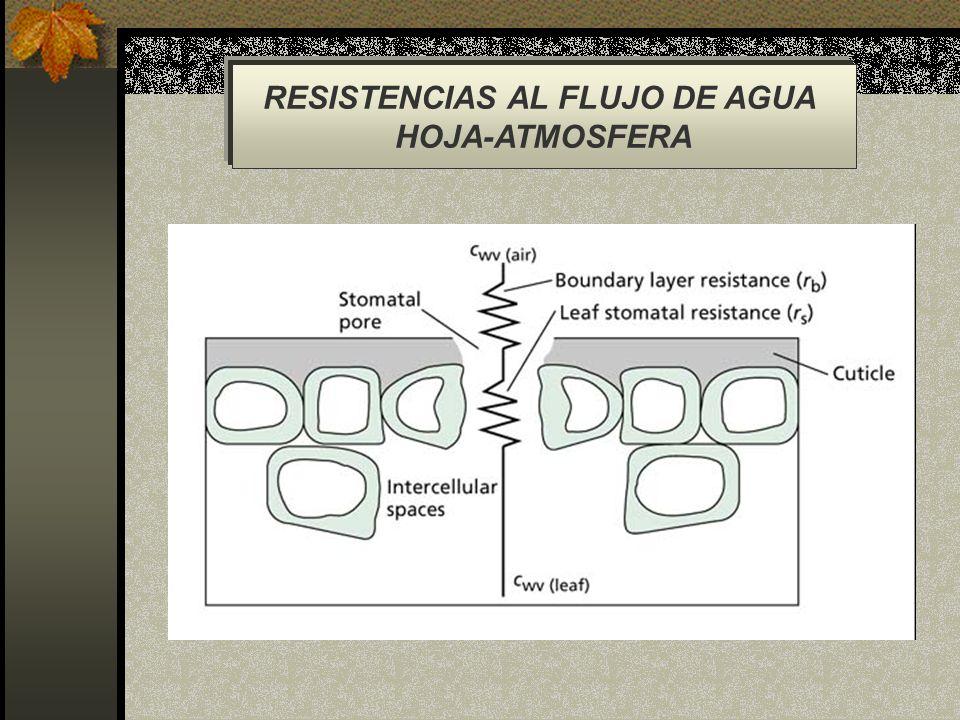 RESISTENCIAS AL FLUJO DE AGUA