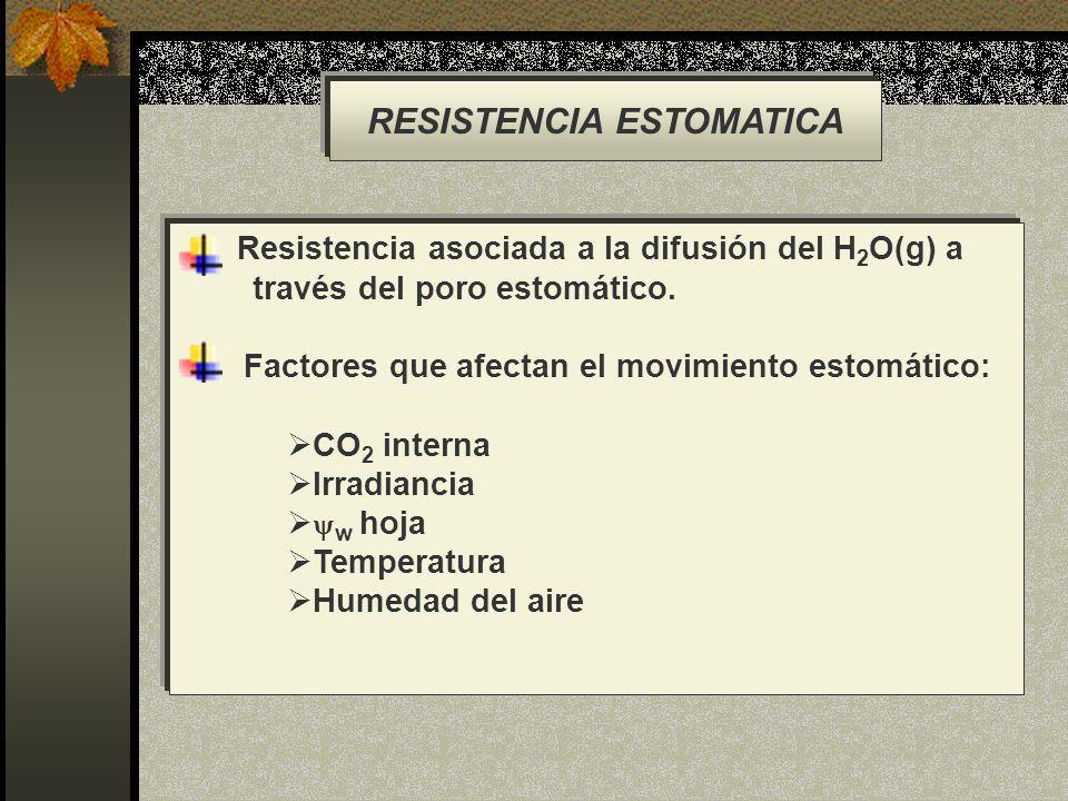 RESISTENCIA ESTOMATICA