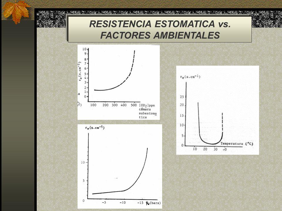 RESISTENCIA ESTOMATICA vs.
