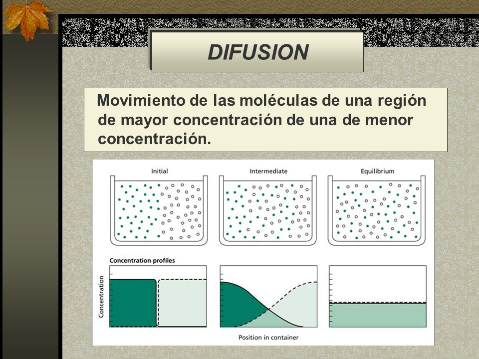 DIFUSION Movimiento de las moléculas de una región