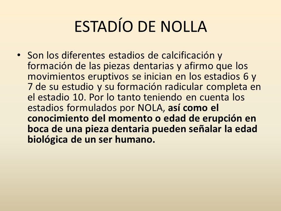 ESTADÍO DE NOLLA