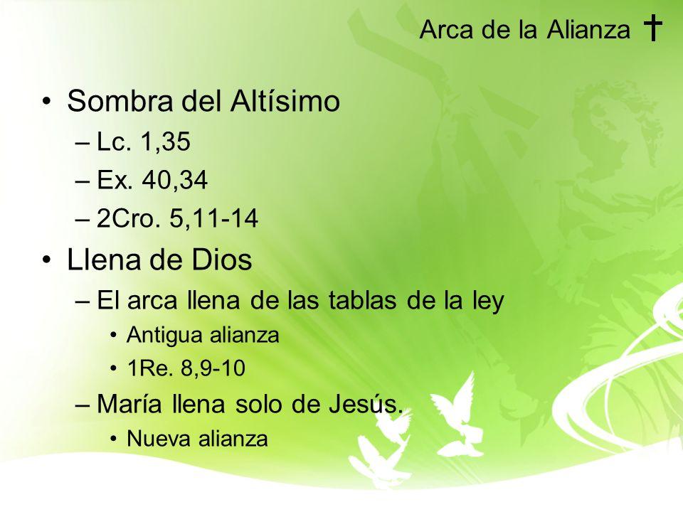 Sombra del Altísimo Llena de Dios Arca de la Alianza Lc. 1,35