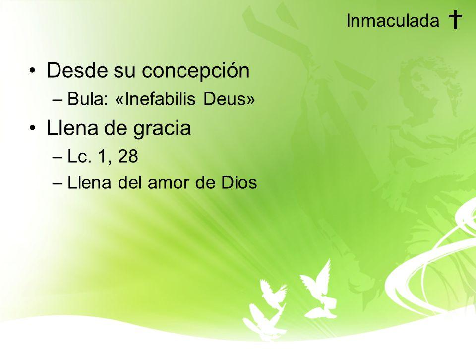 Desde su concepción Llena de gracia Inmaculada Bula: «Inefabilis Deus»