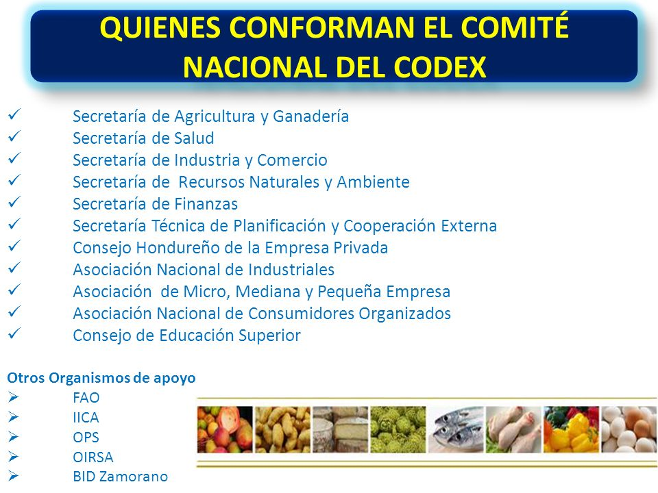 QUIENES CONFORMAN EL COMITÉ NACIONAL DEL CODEX