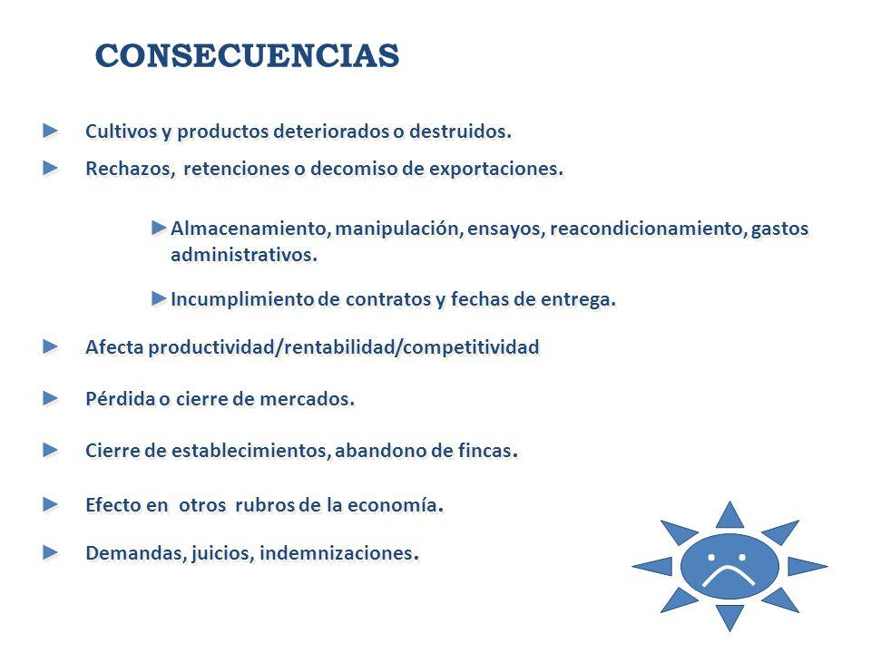 . . CONSECUENCIAS Cultivos y productos deteriorados o destruidos.
