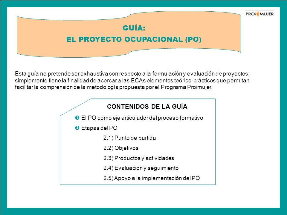 EL PROYECTO OCUPACIONAL (PO)