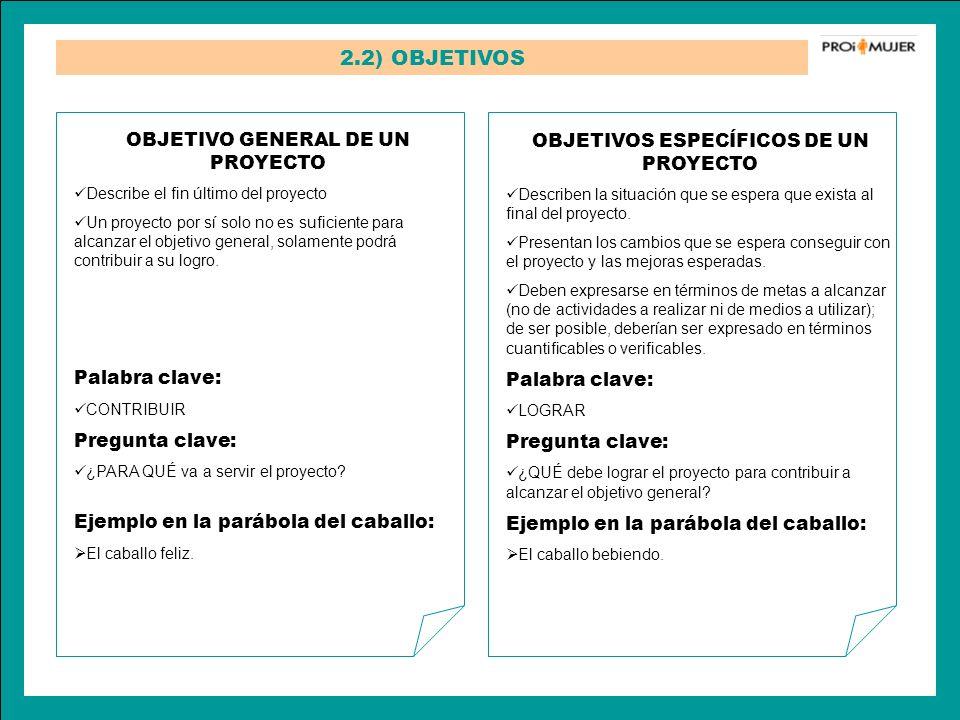 2.2) OBJETIVOS OBJETIVO GENERAL DE UN PROYECTO