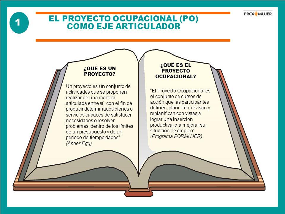1 EL PROYECTO OCUPACIONAL (PO) COMO EJE ARTICULADOR