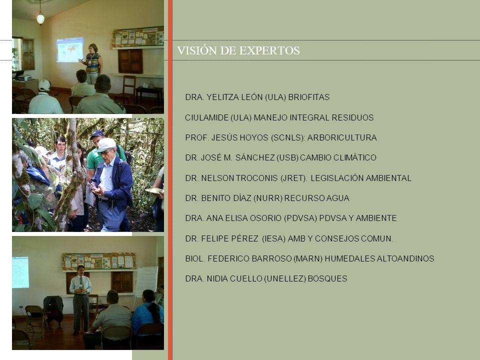 VISIÓN DE EXPERTOS DRA. YELITZA LEÓN (ULA) BRIOFITAS