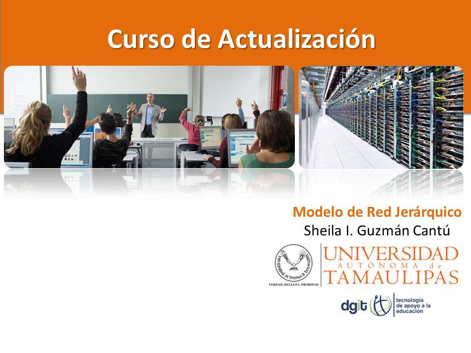 Curso de Actualización Modelo de Red Jerárquico