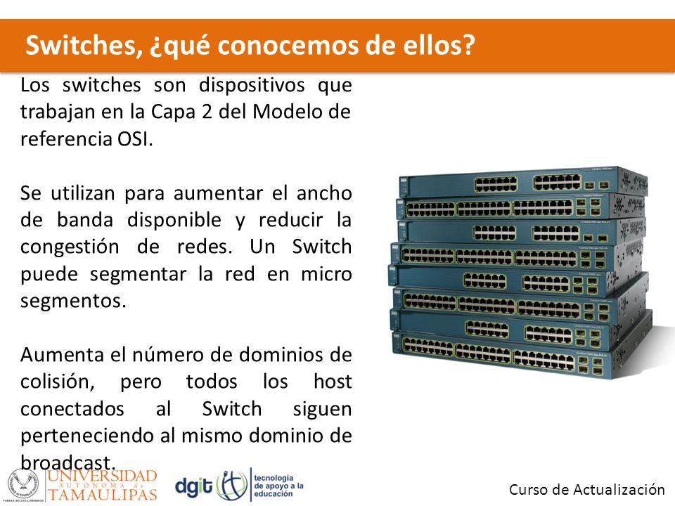 Switches, ¿qué conocemos de ellos