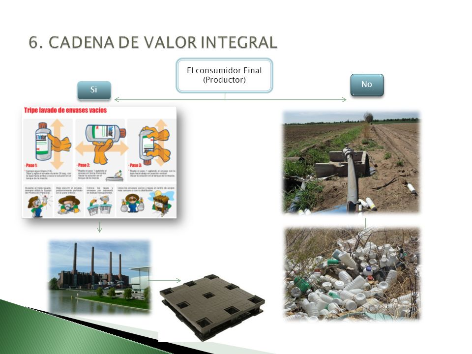 6. CADENA DE VALOR INTEGRAL