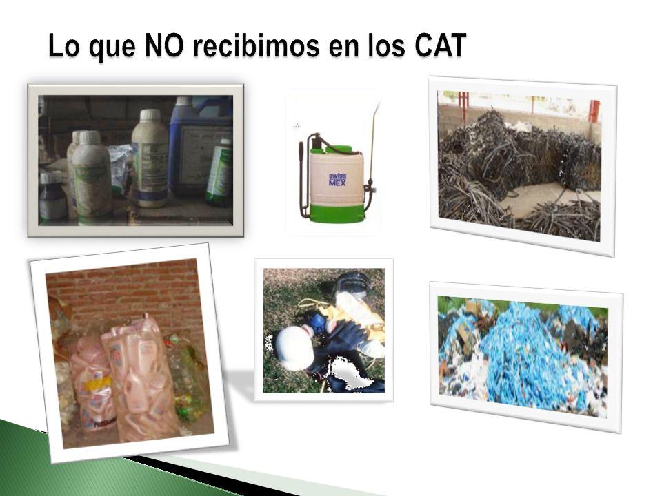 Lo que NO recibimos en los CAT
