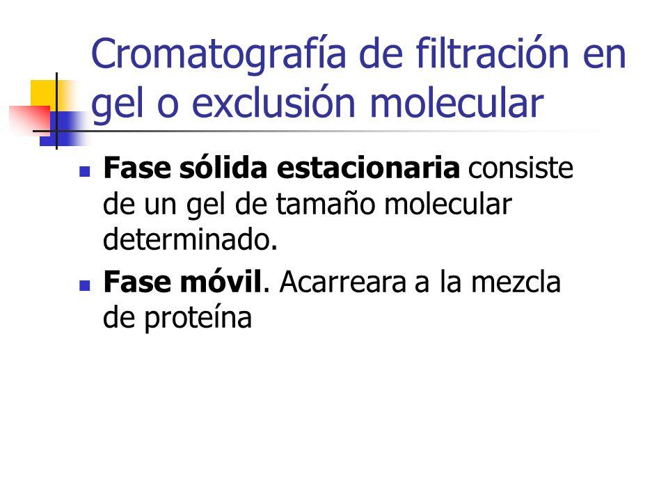 Cromatografía de filtración en gel o exclusión molecular
