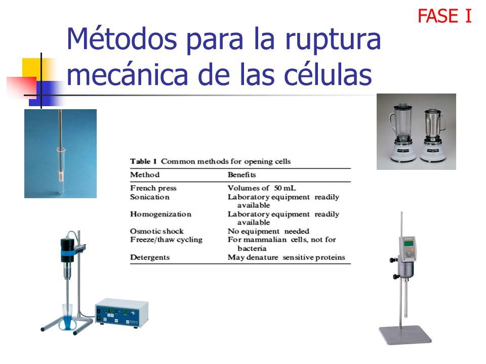 Métodos para la ruptura mecánica de las células