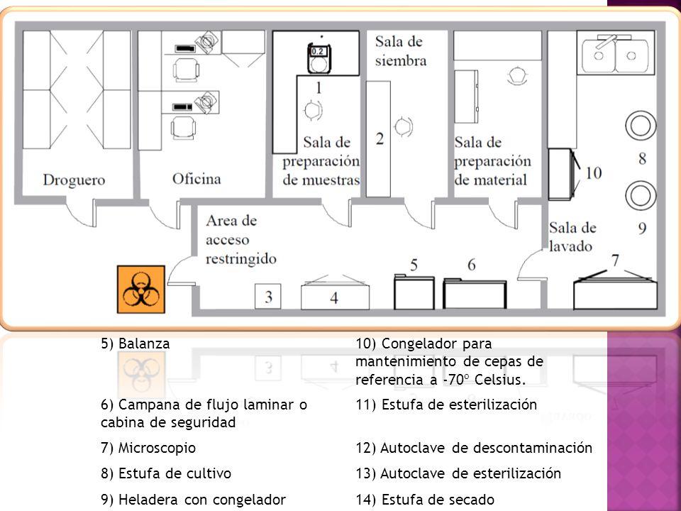 5) Balanza 10) Congelador para mantenimiento de cepas de referencia a -70º Celsius. 6) Campana de flujo laminar o cabina de seguridad.