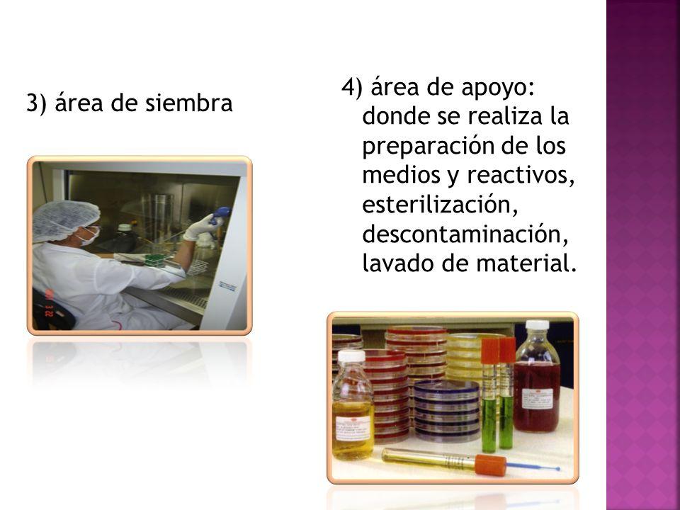4) área de apoyo: donde se realiza la preparación de los medios y reactivos, esterilización, descontaminación, lavado de material.